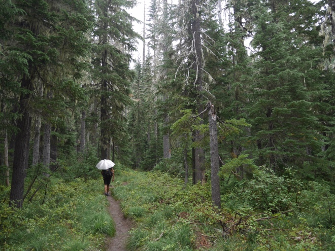 A Pacific Crest Trail hiker in the rain.