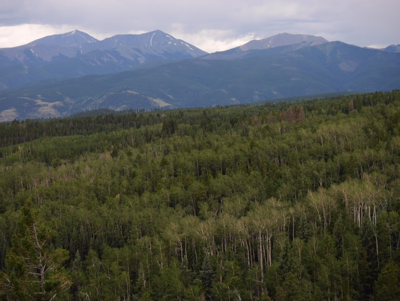 Mount Shavano and Tabeguache Peak