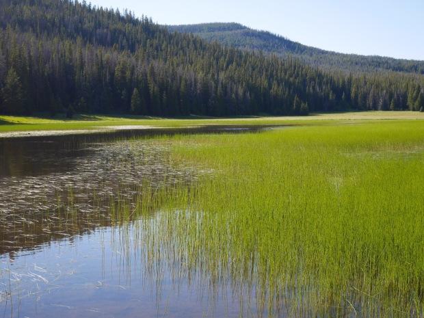 Cottonwood Lake on the way to Anaconda, MT.