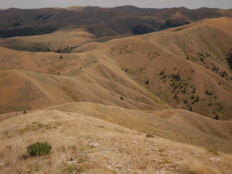 The Continental Divide Trail along the Montana/Idaho border.